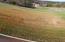 240 Wildwing Way, Vonore, TN 37885