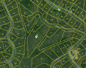 Lot 734 Mossy Hollow Rd, Baneberry, TN 37890