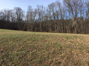 Lot 2 Exeter Drive, Andersonville, TN 37705