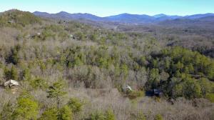 Hawk View Drive, Townsend, TN 37882