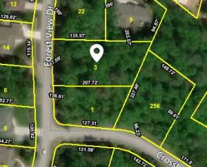 Forest View Drive, Fairfield Glade, TN 38558
