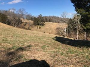 Lot 1 Dutch Valley Rd, Washburn, TN 37888