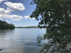 River Rd, Kingston, TN 37763