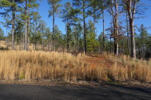 Quail Run Drive, Vonore, TN 37885