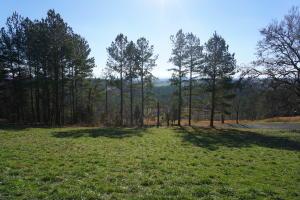 Overlook Way, Vonore, TN 37885