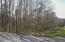 3746 Windstream Drive, Friendsville, TN 37737