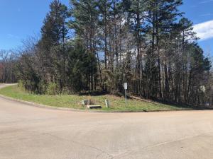 102 Otter Lane, Lenoir City, TN 37772