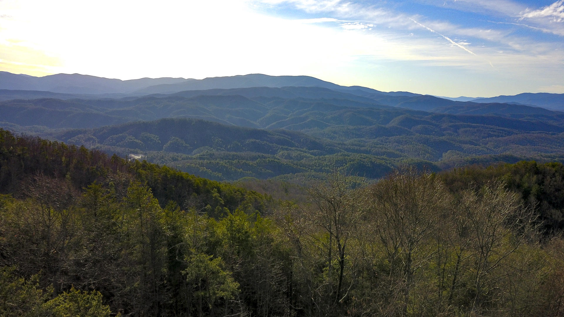 Lot 24, Chilhowee Mountain