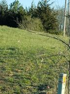 Byrd Farm Lane, Kodak, TN 37764