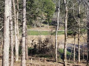 Lot 99 Eagles Ridge, Tazewell, TN 37879