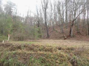 Pumpkin Hollow Rd, Clinton, TN 37716