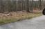Sawmill Cove, Lot 26, Rockwood, TN 37854