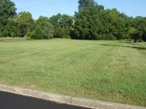 Lot 31 Jack Sharp Drive, Seymour, TN 37865