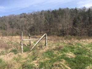 Donahue Rd, Luttrell, TN 37779