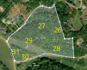 4529 W Countryside, Friendsville, TN 37737