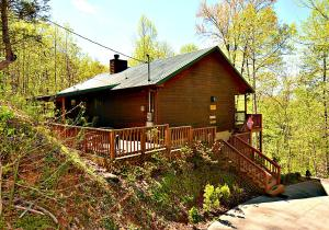 Secluded 2 bedroom, 2 bathroom nearly 1,100 square foot mountain chalet located in scenic Sky Harbor. This home offers a large deck area where you can enjoy the beauty of the Smokies! Inside you'll find a great room with a masonry fireplace, a cozy dining area, full kitchen and two bedrooms, each with a private bath. Currently on a well established rental program and just minutes to many of the areas most well known attractions!