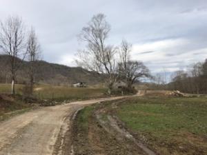 Mud Hollow Farm, Speedwell, TN 37870