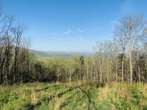 Renegade Mountain Pkwy, Crab Orchard, TN 37723