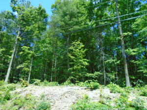 Clearwater Circle, Townsend, TN 37882