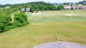 L-1401 Turnstone Lane, Vonore, TN 37885