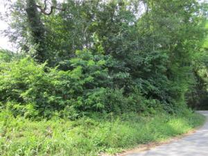 Cabbage Rd, Blaine, TN 37709