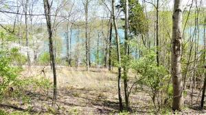 Deer Hill Lane, Lafollette, TN 37766