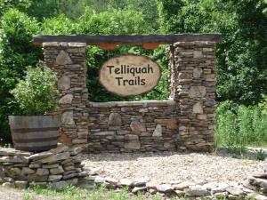 Cherokee Winds / Route 360 Drive, Tellico Plains, TN 37385