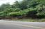 .85 Acre Lot across the street from Watts Bar Lake View from Right side of lot.