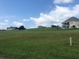 L-473 Rock Point Drive, Vonore, TN 37885