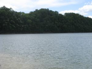 Lot 42 Mountain Shores Road, New Tazewell, TN 37825