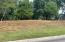 Serenity Dr, Lot 21, Harriman, TN 37748