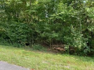 152 Gigi Lane, Loudon, TN 37774
