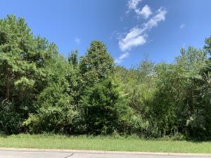 163 Pocola Way, Loudon, TN 37774