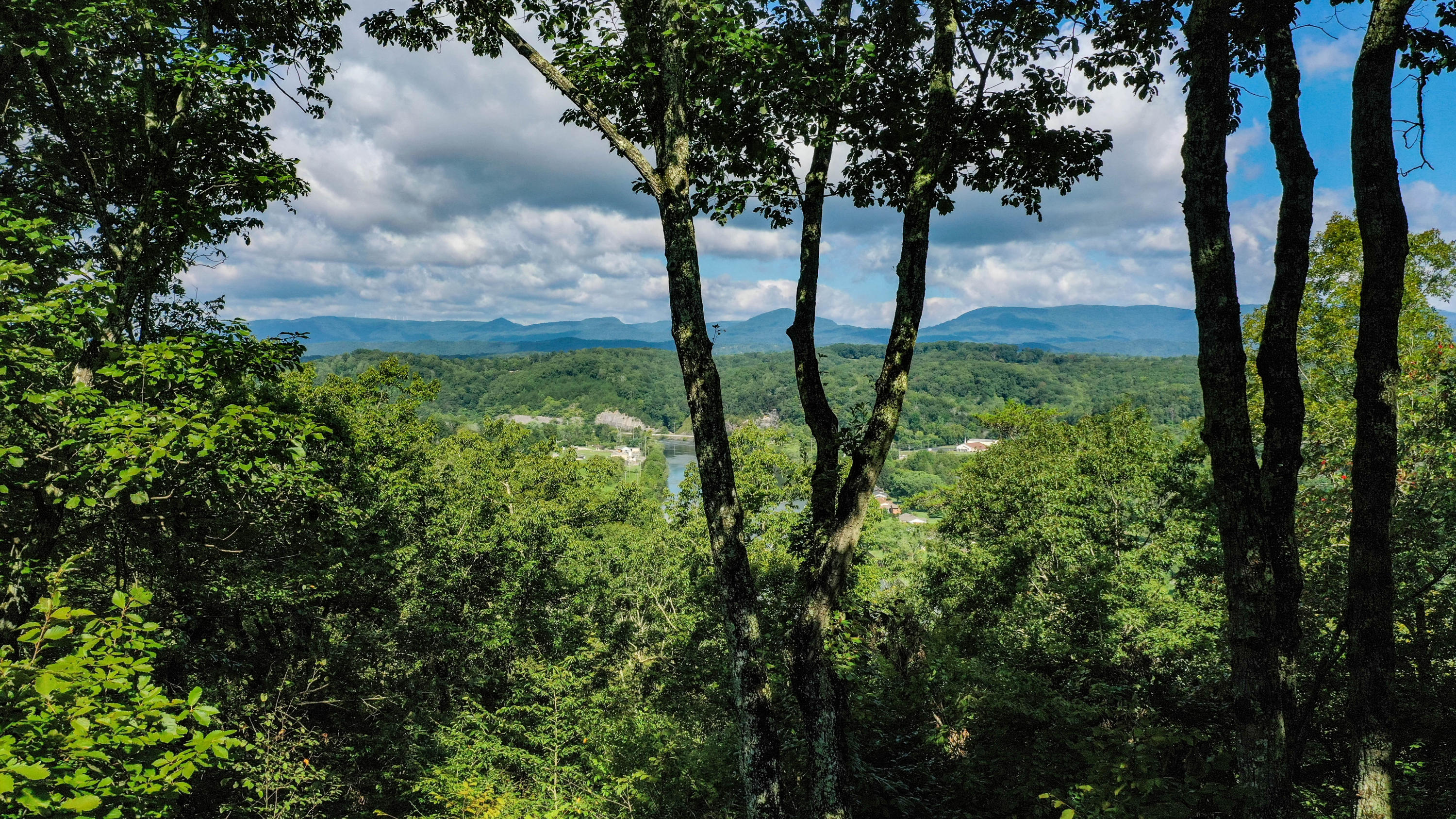 20190829232149804987000000-o Clinton anderson county homes for sale