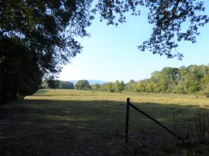 Live in the beautiful countryside but close to town too! 65 +- acres situated just off the highway. The land has gorgeous mountain views from oneof the many potential house sites. Fencing and some cross fencing in place. It is not restricted so any type home is fine!