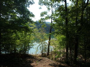 Lot 36 Mountain Shores Rd, New Tazewell, TN 37825