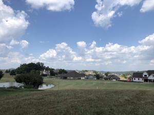 219 Osprey Circle, Vonore, TN 37885