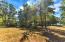 630 Eagle Point Drive, Rockwood, TN 37854
