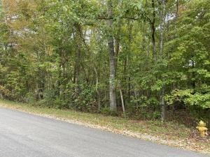 419 Igoti Lane, Loudon, TN 37774
