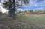 Lower pasture.