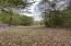 Lower pasture view.