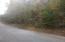 Lot 453 Silver Tr, New Tazewell, TN 37825