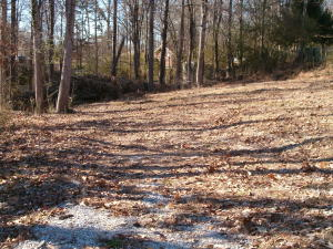 Great River Bend lot, flat at road and a gentle slope towards the back.