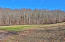 Lot 109 Harness Lane, Speedwell, TN 37870
