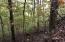 Overlook Trail Lot 55, Maynardville, TN 37807