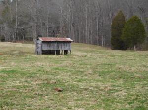 Asheville Hwy, Strawberry Plains, TN 37871