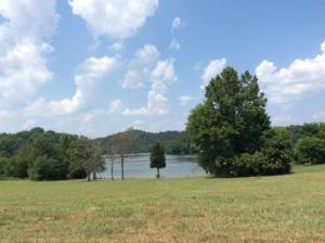 365 Pineberry Drive, Vonore, TN 37885