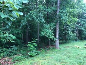 117 Oligi Lane, Loudon, TN 37774