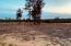 Maddie Way, Jamestown, TN 38556