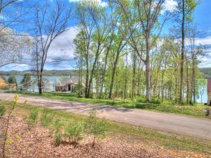 Lot 56 E Shore Drive, Rockwood, TN 37854